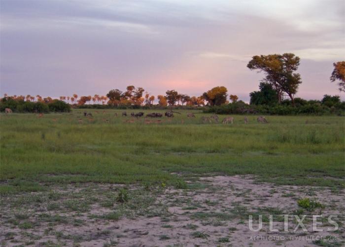 Где находится ботсвана 196